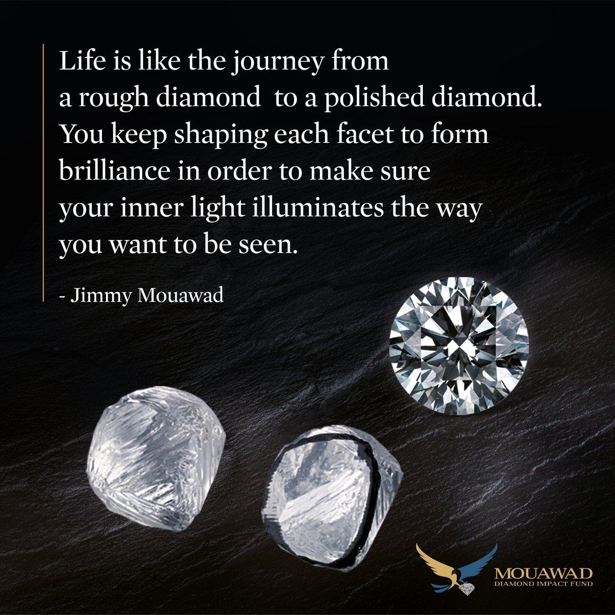 #Diamond #Heritage Lifequotes #Motivation #Mouawad #Inspiraton #Lifelessons #Empowerment #Sustainability  #Brightfutures https://mwd.social/bf871pic.twitter.com/XmIS08Qv3k