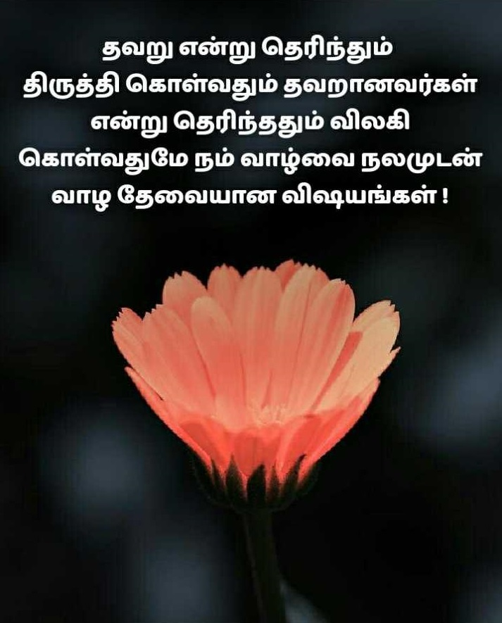#ThursdayThoughts #ThoughtForTheDay #Tamil #Quotes #TamilQuotes #lifequotes #IBCMangaipic.twitter.com/Ap6XdEVrEP