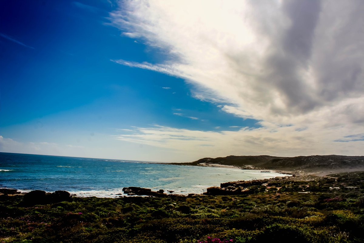 My #calming pic of the day Mornings at #capeofgoodhope in #southafrica  #ilandedhere #travel #travelblogger #TravelTomorrow #DreamNowVisitLater #DreamNowTravelLater #africa #beach #summers #landscape #landscapephotography #atlantic #travelphotographypic.twitter.com/PZxBiRdwXb