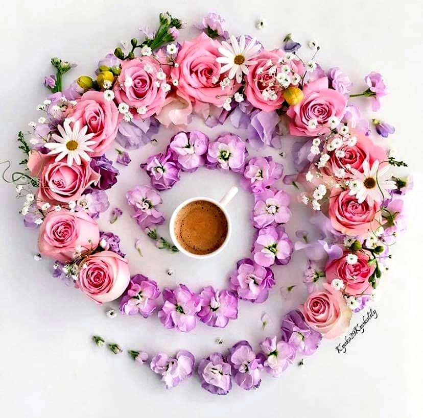 Tutsan Ellerimi bırakmasan Çizsek Bütün yasakların üstünü Ben Çay demlesem Sen şiir okusan Bakarsın Limon çiçekleri de katılır Kim bilir Yaz yağmurları da Görse Her şey bizi yan yana Bilse Herkes seni Nasıl Sevdiğimi... #SeçilOğuz #Günaydın 🏡🌿🌺☕ #Persembe