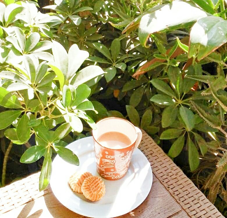 How beautiful this morning! #morningperson #morninglover #sunny #warm #openair #balcony #plants #breakfast #Nescafe #k7k #photography #StayHomeStaySafe pic.twitter.com/DPSBSPGH4Q