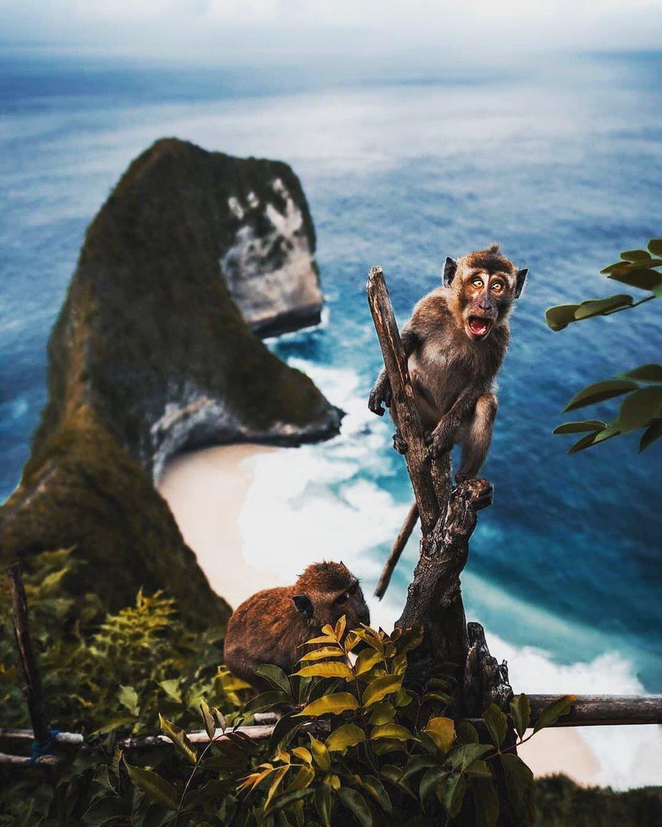 Nusa Penida is an island southeast of Indonesia's island Bali and a district of Klungkung Regency  #nusapenida #bali #nusalembongan #nusapenidaisland #indonesia #ubud #explorebali #baliindonesia #kuta #travel #nusapenidatour #brokenbeach #kelingkingbeach #nusapenidatrip #balilife