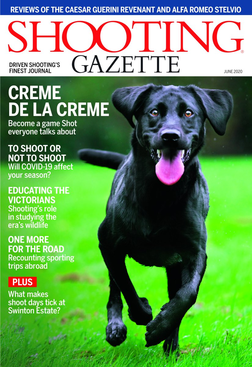 The @swintonestate. Victorian taxidermy. The @CaesarGuerini Revenant and @AlfaRomeoUK Stelvio. French shotgun licensing. Nutley Manor. Paris Exhibition Purdeys. COVID-19. How to shoot like a God. It's all in June's Shooting Gazette. Tap for the cover! https://bit.ly/2M84X8l pic.twitter.com/L5YFldvICn