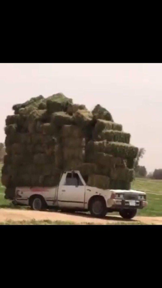 Now this guy can haul some hay https://t.co/m2TGBbWZBr