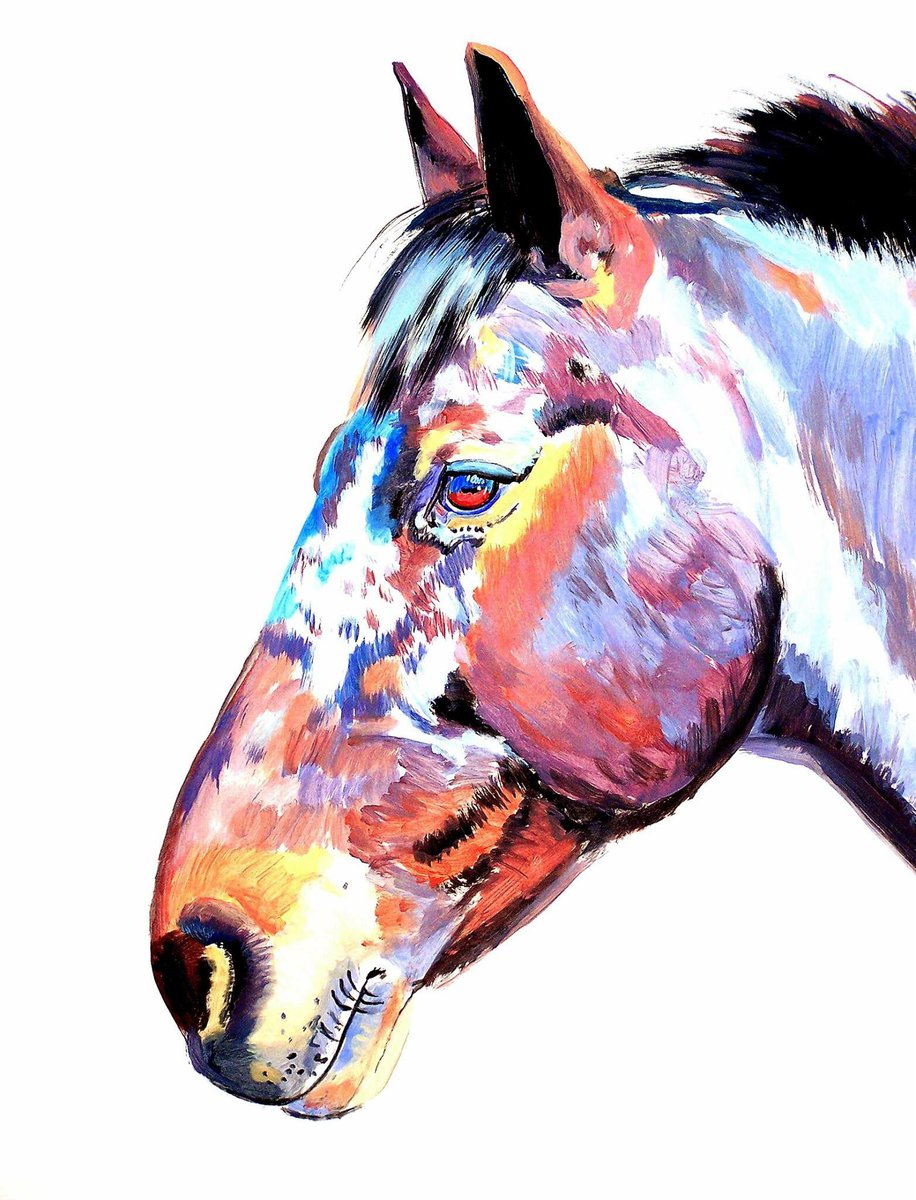 """Splotches"" 24 x 19 inch ink and acrylic on paper. Available #ink #inked #drawing #drawings #painting #paintings #horses #equestrian #horseart #equineart #horse #equine #art #artist #artists #artwork #artstudio #fineart #contemporaryart #animals #portraitpic.twitter.com/zO0hOFRoGa"