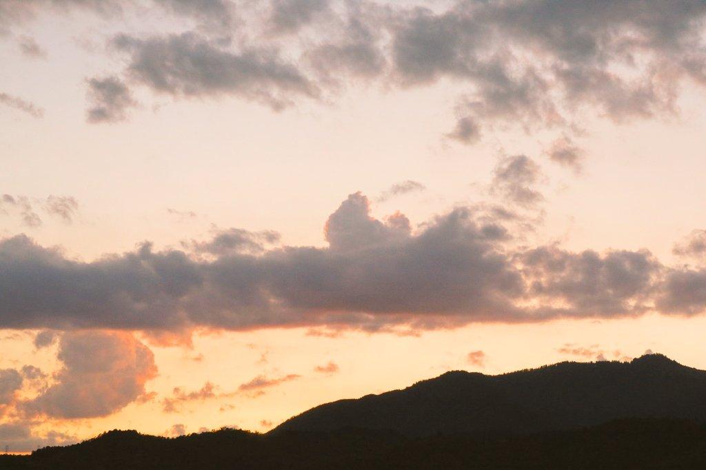 0929_shino photo