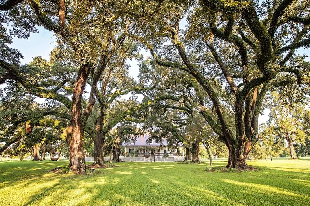 Natchitoches, (Nack-a-tish) the original French colony in Louisiana, is the oldest settlement in the Louisiana Purchase. Not to mention how beautiful it is! Courtesy of Natchitoches CVB #TrvlTasteTour #Travel #Taste #Tour #traveling #travelphotographypic.twitter.com/fx8Tc25Qm7