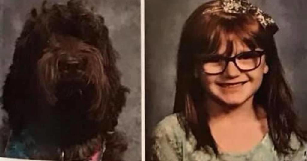 School surprises 7-year-old girl with her a photo of service dog in the yearbook cbsn.ws/2B5GUVj