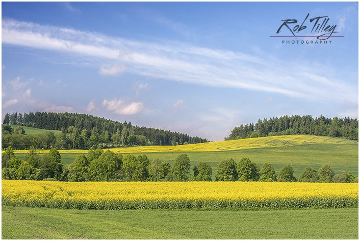 Canola Field, Bohemia, Czech Republic.  The Czech countryside is so beautiful in the spring.  Recently this image was published in a calendar. #PhotoOfTheDay #potd pic.twitter.com/sVH8TbUASM
