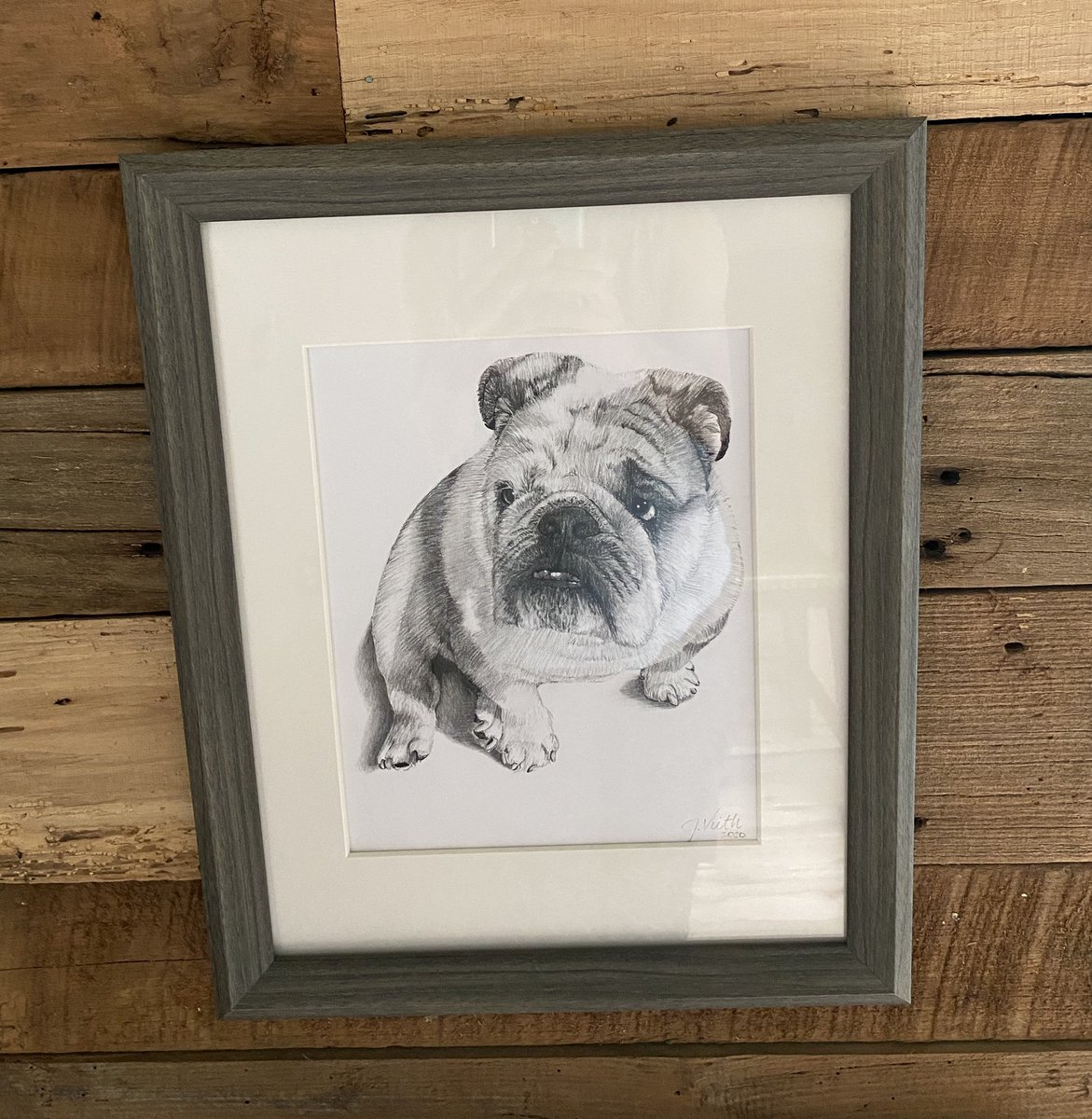 I sit so still, I am officially very sketch-able - thanks to the amazing artist Julie Bibb! #englishbulldog #artistsontwitter pic.twitter.com/vacMsCwH81