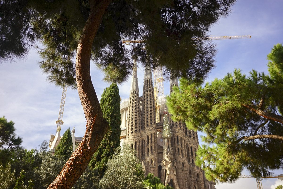 See #Barcelona through the eyes of a designer 👀 https://t.co/qZ8sS5wHXy https://t.co/TtV1kECytF