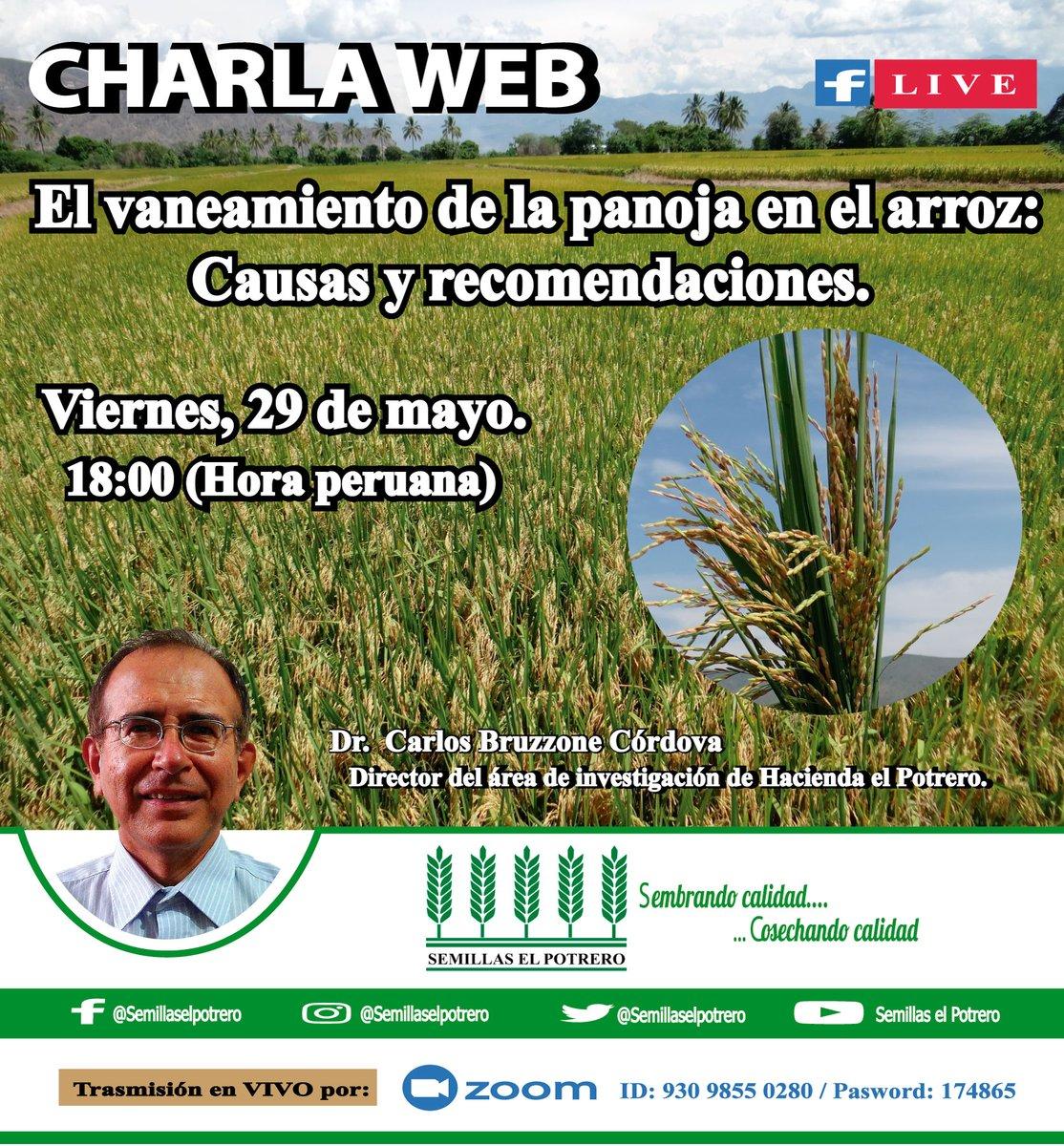 """Este #viernes 29 de mayo, a las 6 de la tarde, seguimos con las #conferencias virtuales. """"El vaneamiento de la panoja en el cultivo de arroz: Causas   y recomendaciones""""  Para acceder a la reunión, ingresen a este link: https://zoom.us/j/93098550280… Password: 174865pic.twitter.com/p3lXKfnLa1"""