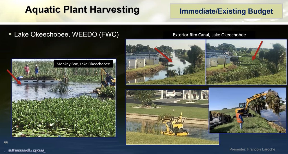 """Tune in now as SFWMD Vegetation Management Section Administrator Francois Laroche presents on """"Enhancing the District's Vegetation Management Practices and Exploring Strategies to Reduce Herbicide Use"""" during today's WRAC Public Forum: https://sfwmd.link/3d9rJso  #SFWMDMtgpic.twitter.com/Dgqqn4QMVY"""