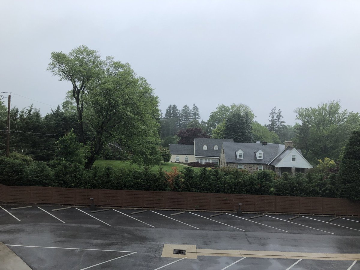 TGIT. Raining. Good for plants we need. Just misty for 2mi this AM, then weeded, planted. <br>http://pic.twitter.com/9lJWq0rJOy