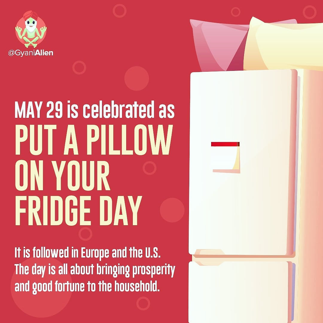 Tomorrow is 'Put a Pillow on your Fridge Day'. #putapillowonyourfridgeday #FridayVibes #May29th #pillow #factoftheday #QuarantineAndChill #covidlife #LifeInLockdown https://t.co/44okfdn1pZ https://t.co/u785CfZxEd