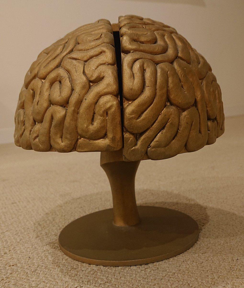 メロンパン入れって何?ってそりゃ知らない方も多いですよね。これです。脳ミソの中にメロンパンを入れる仕様になってます。我が家の宝です。 https://t.co/qRDfD6jXjk