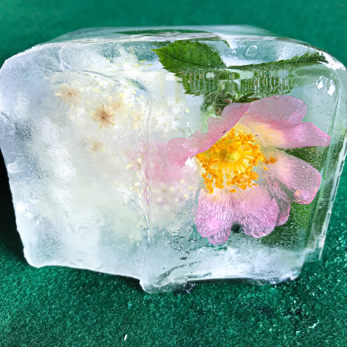 Don't throw out flowers! Freeze them for some #sensoryplay  #play #eyfs #resolvetoplay #nature https://t.co/qEMRAFldlo