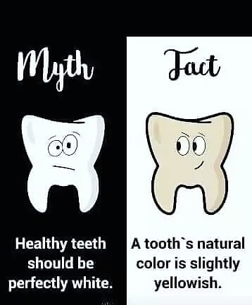 #MythBurster In our next episode; what do you know about the colour of your teeth? #TeethWhitening #OralHealth  #DrTeeth  #AskTheDentalSurgeonpic.twitter.com/mXtaBRri3m