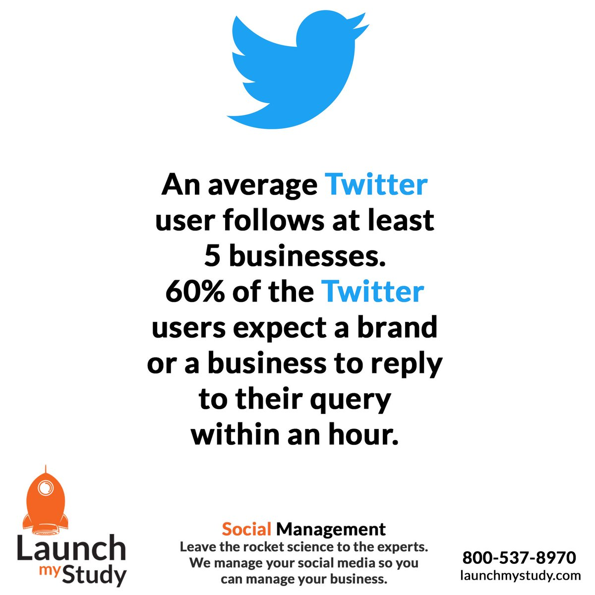 An average Twitter user follows at least 5 businesses. 60% of the Twitter users expect a brand  or a business to reply to their query within an hour. - - - #twitter #twitterposts #twittermarketing #twitterpost #twitterfacts #twitterwhy #TwitterTips #twitterupdate #TwitterAds ...pic.twitter.com/xmO9TVJ6xr