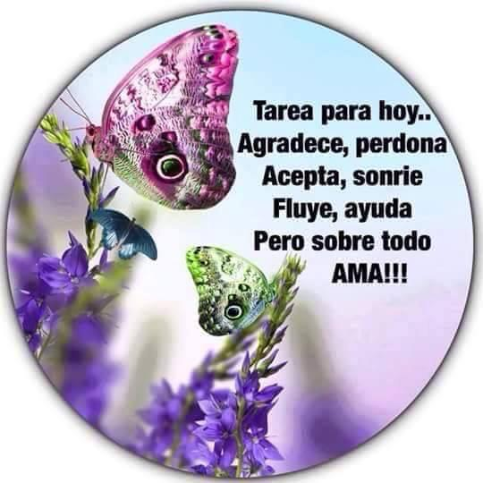 #lindodia a todos los Twitters... pic.twitter.com/6cjtWvYjrn