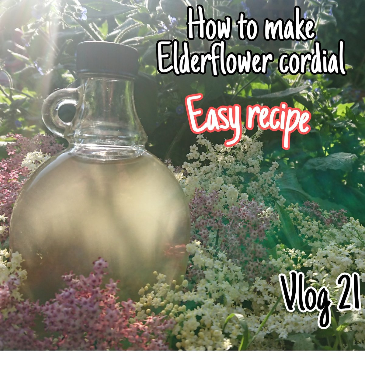 We made elderflower cordial with the kids its beautiful to drink & energising  Here's the recipe   https://youtu.be/eNN08Y_MNK0  #Nature #naturephotography #naturelovers #NatureLover #natureza #Naturegram #natureporn #natureaddict #naturephoto #natureshots #naturelove #natureonly pic.twitter.com/EnjmzU343U  by Home Is where Our heart Is