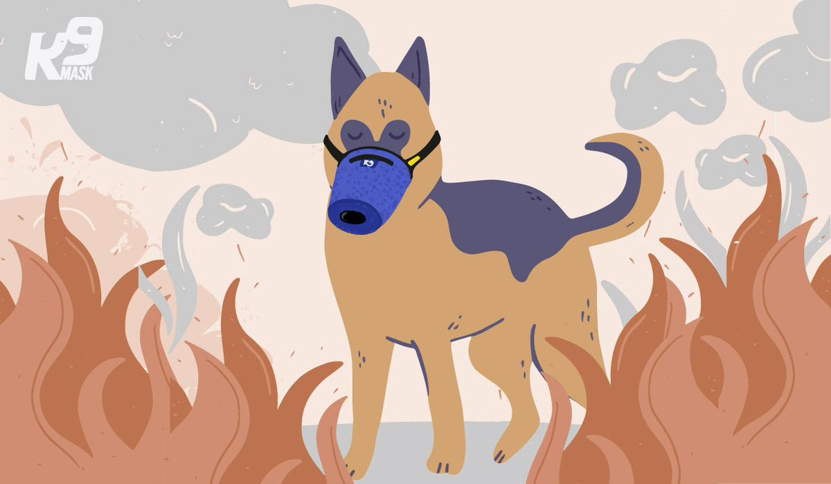 Breathing smoke from a wildfire for 5 minutes is like smoking a pack of cigarettes. Protect your pet with the premium air pollution solution for your dog - https://K9Mask.com . #K9Mask #DogAirFilter #N95DogFilter #DogMask #SmokeMask #AirFilterForDogs #K9AirFilter #K9Carepic.twitter.com/7Eg8pb2FL5