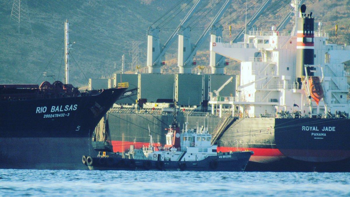#boludatug  #riobalsas #royaljade #datkeisea #shipspotting  #shipspotter #discoverocean #ocean #sea #marines  #seafarer #lifeonship #coolmariners #shiplife #lifeatsea #boats #sailorlife #offshore #bulkcarrier #port #portofguaymas  #guaymas   #instashipping  #portlife #captainpic.twitter.com/2bSmBVgspM