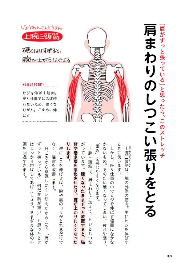 ストレッチ本は数あれど、「この筋肉を伸ばすと、なぜ疲れがとれるのか」を丁寧に解説している本は少ない。『座り仕事の疲れがぜんぶとれる コリほぐしストレッチ』は、ここに力を入れました。たぶん日本一わかりやすいです(自称)。画像は肩・腕・猫背に効くストレッチ。肩がいきなり軽くなります。