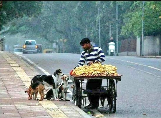 Kindness doesn't come with money. Each one can help. #FridayMotivation <br>http://pic.twitter.com/xhhYWmzMen