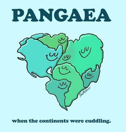 Pangea, quando i continenti erano una famiglia. pic.twitter.com/vUVXjMrJWv