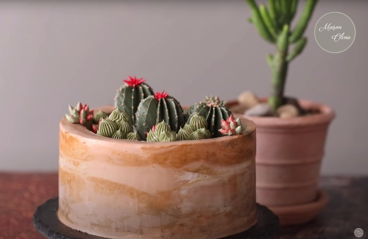 Is it a cake? Is it a cactus? → yt.be/TJRp