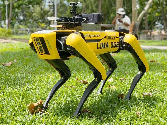 ロボット犬が公園巡回 シンガポール、密集抑止新型コロナ対策で外出制限が続くシンガポールで、人の密集を抑止するため犬型ロボット「スポット」が試験的に公園を巡回しました。センサーやカメラを搭載し、捉えた画像などを当局者が遠隔モニターで確認する仕組みです。