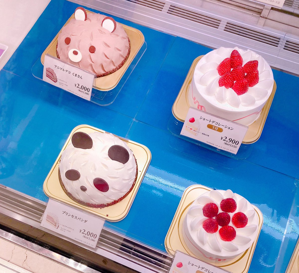 ケーキ買いに🍰来たけど❗️🐼