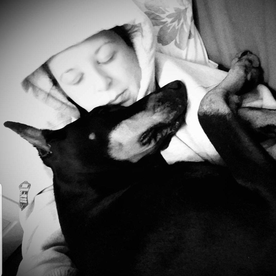 Some angels choose fur instead of wings. Almost 2 years....but still hurts like it was yesterday...miss u Kiara  #dogs #doberman #myangel #furangelpic.twitter.com/MpsoqIXOmN