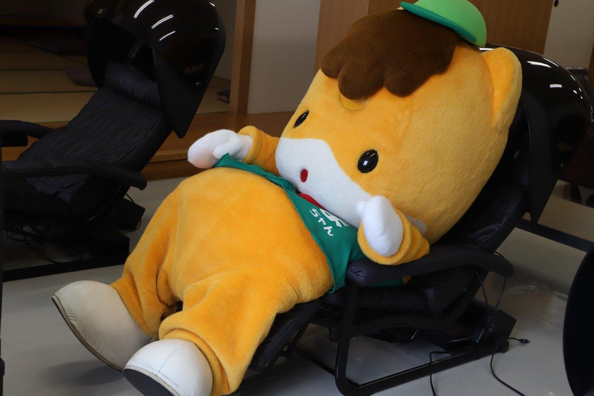 RT @gunma_gunmachan: 今日も一日、ゆっくりするのを頑張ったなあ~ おやすみ🐴 https://t.co/ZG9OFBFnWD