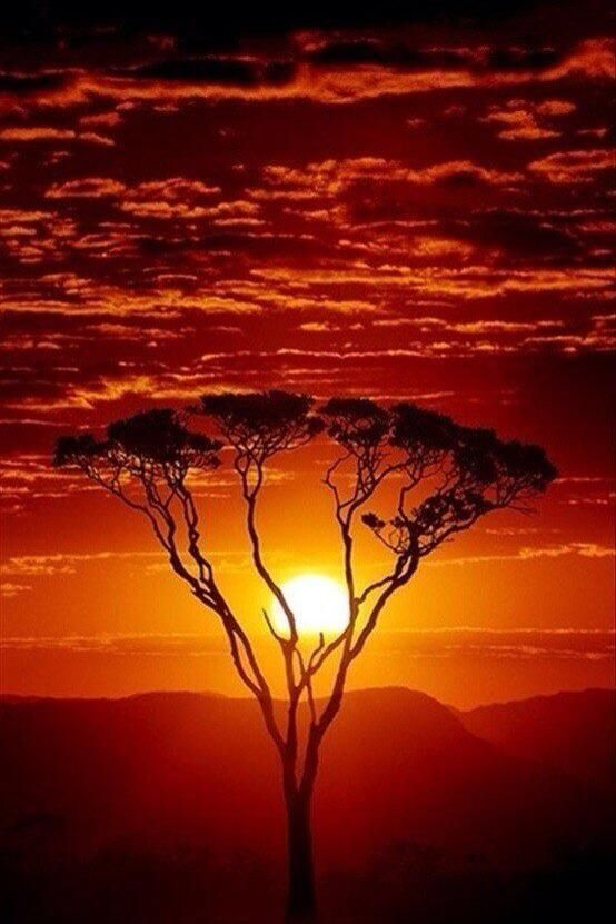 """""""There is nothing more musical than a sunset.""""  ~Claude Debussy <br>http://pic.twitter.com/MKxAVFACbb"""