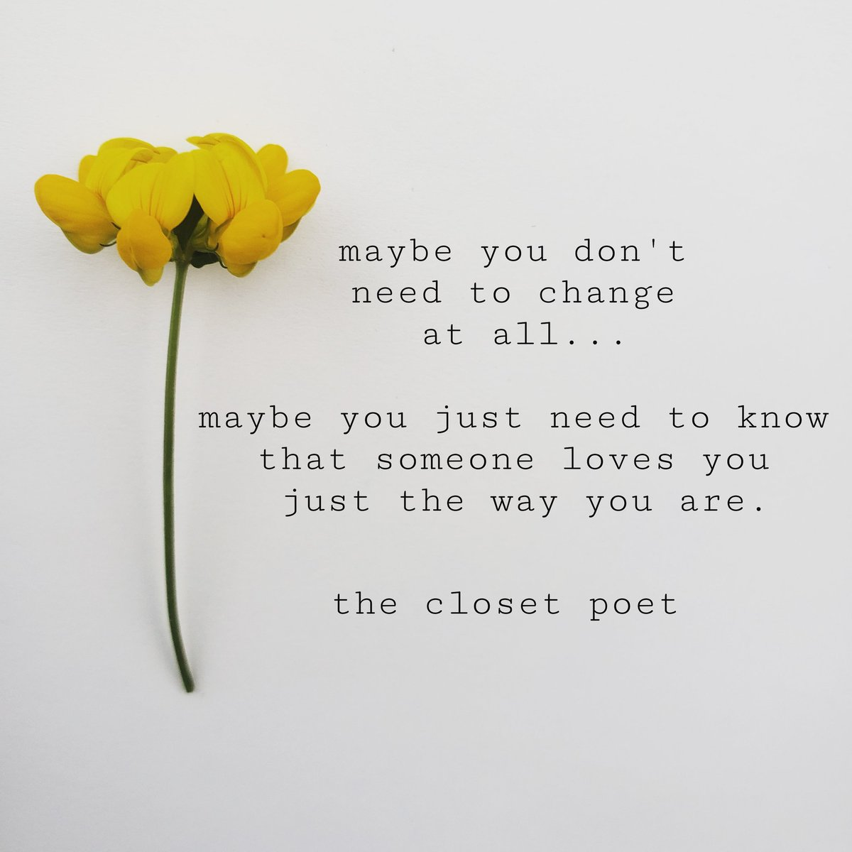 Maybe you don't  need to change at all...  Maybe you just need to know  that someone loves you  just the way you are.   #theclosetpoet #love pic.twitter.com/aMYe4tnAdi