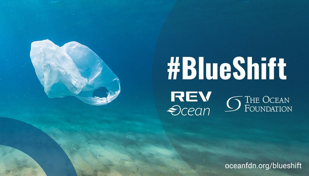 Despite the reduction of global economic activity during the #COVID19 outbreak, #plasticwaste in the #ocean has continued to rise. Let's push for a #BlueShift and focus on reducing consumption while scaling up recycling. https://buff.ly/364o24M  #OceanDecade #OceanSolutionspic.twitter.com/AkjIot3L2e