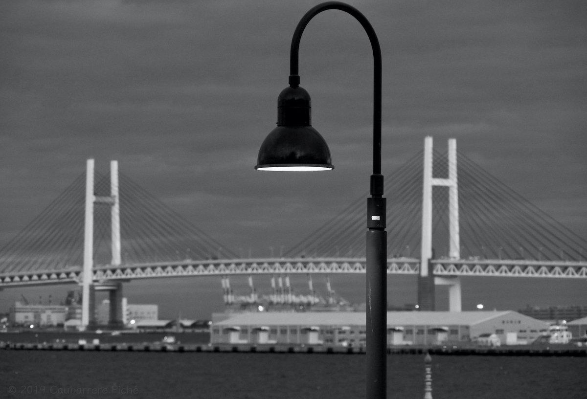 Street Lamp on Yamashita Rinko Line Promenade entax KP 100mm ƒ/7.1 for 1/160 sec. at ISO 3200. #streetlamp #bridge #YokohamaBayBridge #monochrome #YamashitaRinkoLinePromenade #Yokohama #Japan #街路灯 #橋 #横浜ベイブリッジ #横浜 Licensing & prints: http://pix4japan.picfair.com pic.twitter.com/VGyRVKedyy