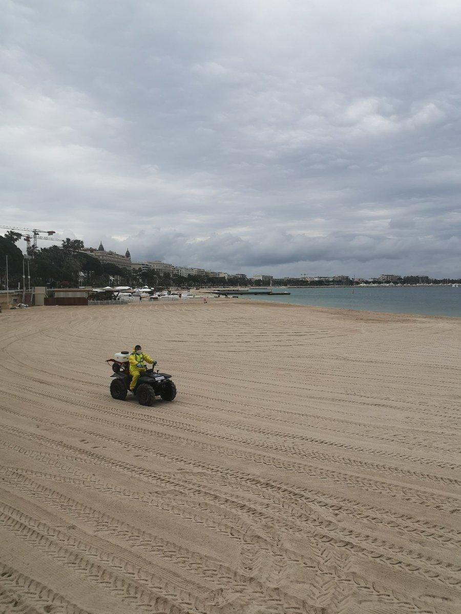 🔴 Par ailleurs la #MairieDeCannes lance une grande opération de désinfection des plages publiques et privées menée à base d'un traitement d'eau oxygénée diluée à 0,5%, sans danger pour l'environnement, la biodiversité et les baigneurs. https://t.co/vBU8LeNlXb