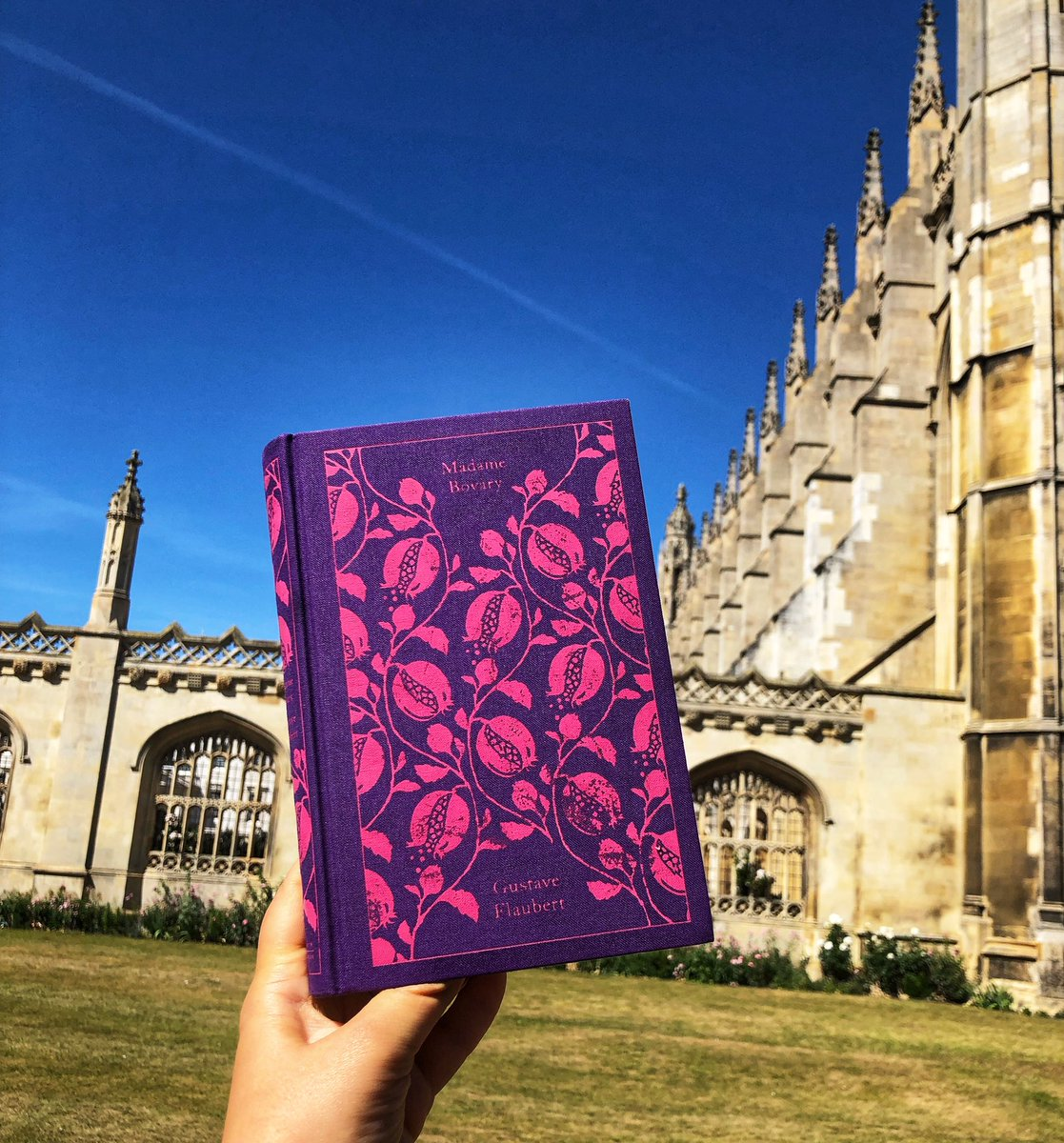 Emma Bovary and I had a stroll. Who read Madame Bovary? Imagine she lived in another century... #book #bookblogger #classics pic.twitter.com/5DppGJ2AT7
