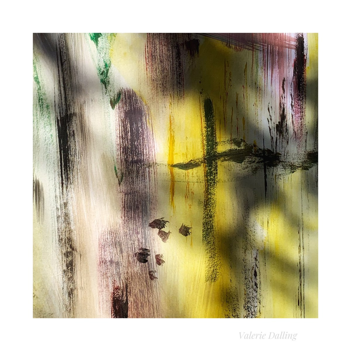 I believe I have a new project to explore, a natural progression for my art as I pursue the idea of the real and imagined through painting and photography...this all came about from painting in my garden yesterday. A second abstract In the Shadows. :) #art #photography #project
