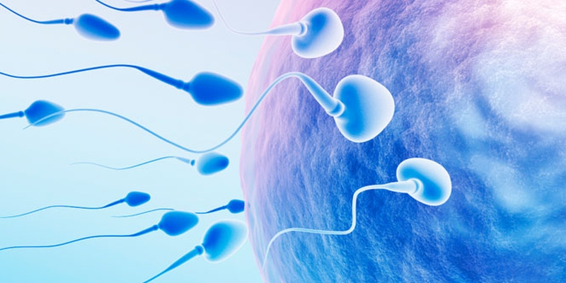 Dr. Anuradha Rao shares a case of infertility in a man of 35. Indecisive, slow in learning and chilly, were among the symptoms leading to the simillimum. hpathy.com/clinical-cases… #homeopathy #tryhomeopathy