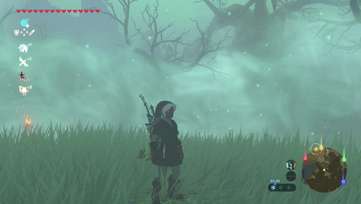 Mit dem Dunkel-Set seid ihr nachts nicht nur schneller, ihr seht auch unheimlich gut aus! 🌙 #Zelda #NintendoSwitch