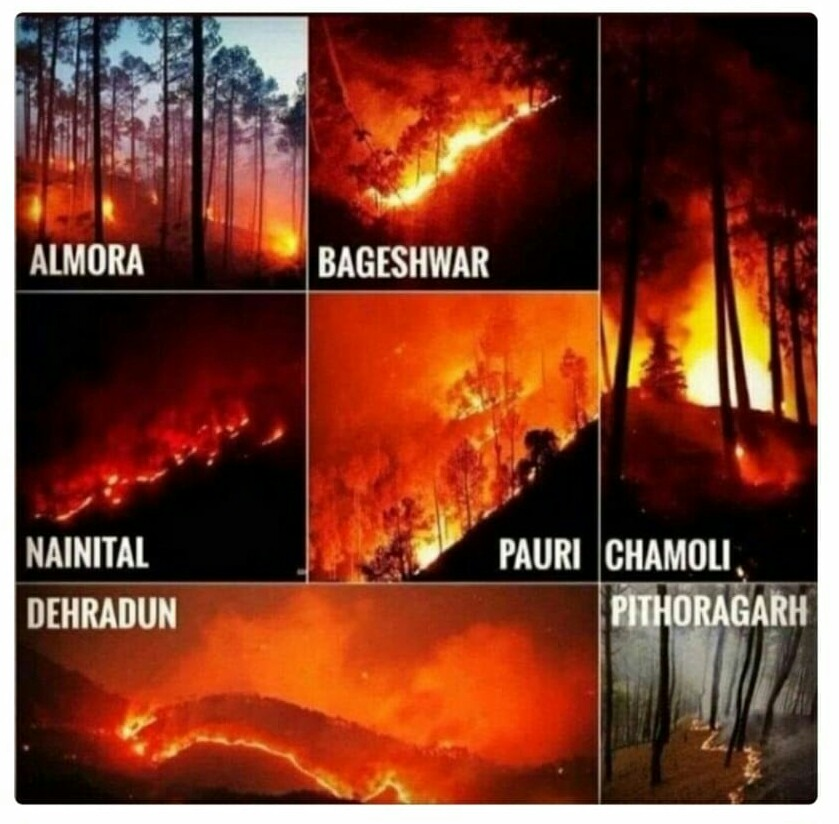 https://t.co/JJKtjRRooY   #forestfire #prayforuttarakhand #itvi #infotechv #SavetheHimalayas #Uttarakhandforestfire #socialgrowth #servicetosociety #workforblind #wildfire #workforsociety #evacuation #rescue #savinglives #emergency #wecare #visuallyimpaired #makingdifference https://t.co/AK2PIfZy2U