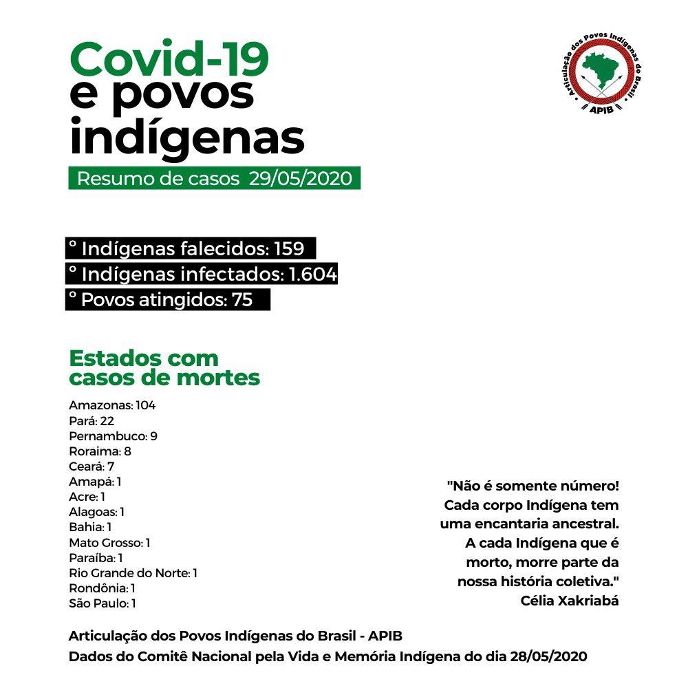 Articulação dos Povos Indígenas do Brasil - APIB | 29/05/2020: Resumo de casos registrados pelo Comitê Nacional pela Vida e Memória Indígena. #Covid19 #PovosIndígenas