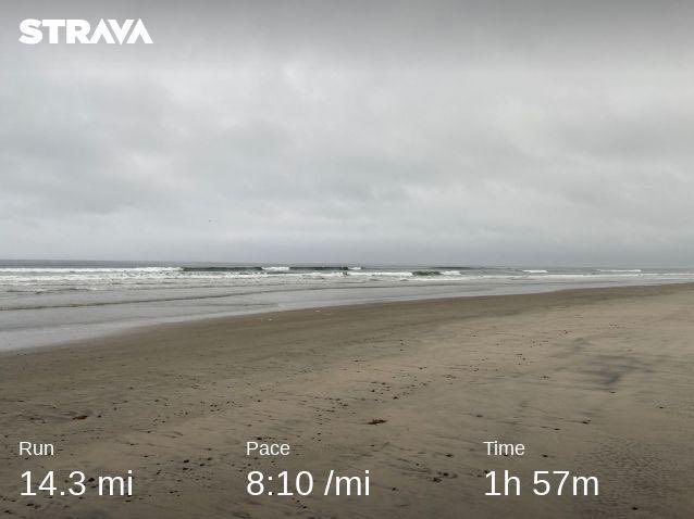 Good morning- had the beach to myself for a little while #BeachRun #runchat #bibchat <br>http://pic.twitter.com/zhZG55cqUx