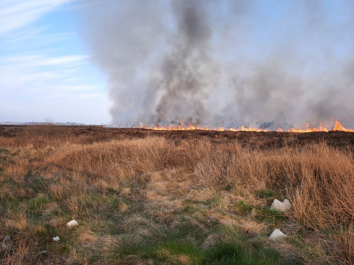 This weekend grass, gorse & vegetation are exceptionally dry  Wildfires risk:  human life wildlife property  environment strain on emergency services in #covid1  You can help:   no littering or flytipping don't burn anything in the countryside   Enjoy the sun <br>http://pic.twitter.com/X1SMNXBAqe