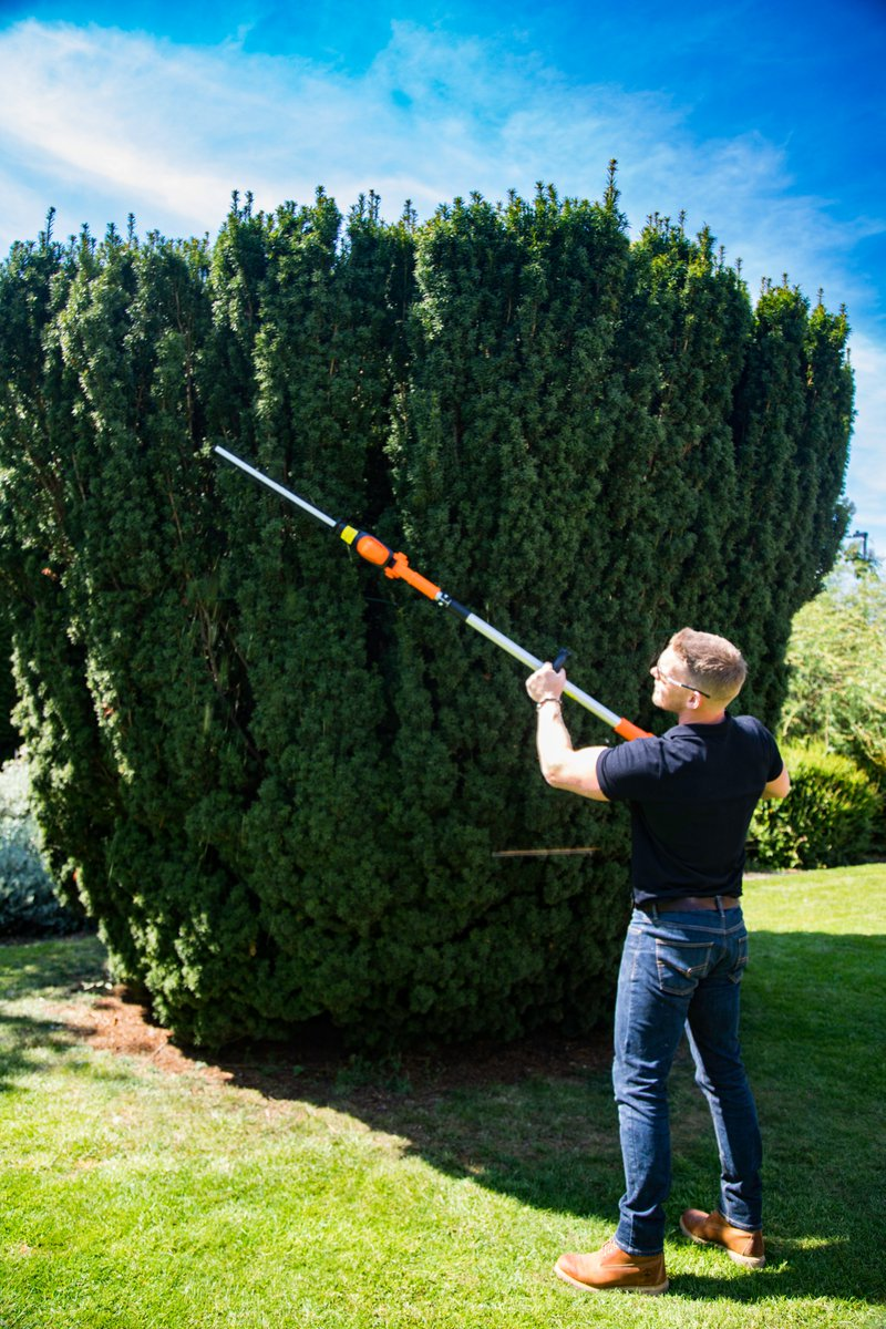 Remember to claim your exclusive @daviddomoney 10% discount code across our full range by registering at . Take a look at our 20V Cordless Pole Hedge Trimmer. #nowires #notangle #cordless  #hedge #trimming #summer #discount #gardening
