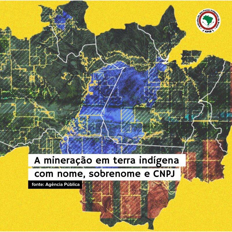 Confira matéria completa no site da @agenciapublica: bit.ly/mineracaoilegal #ForaGarimpoForaCovid #TerrasIndigenas #Imprensa